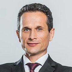 Serge Brühlmann photo